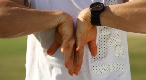 wrist rolls#2